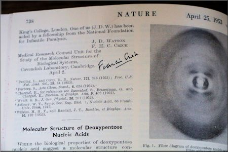 Original Watson & Cricke Article...Signed by Francis Crick