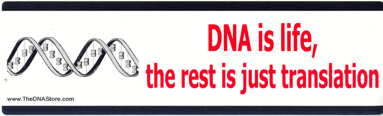 DNA Bumper Stickers